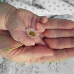 仕事と育児の両立支援用写真